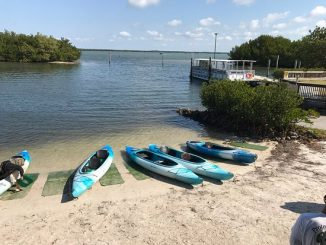 Best Sanibel Island Kayak Launch